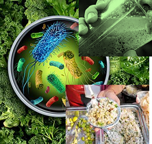 water-borne and food-borne diseases