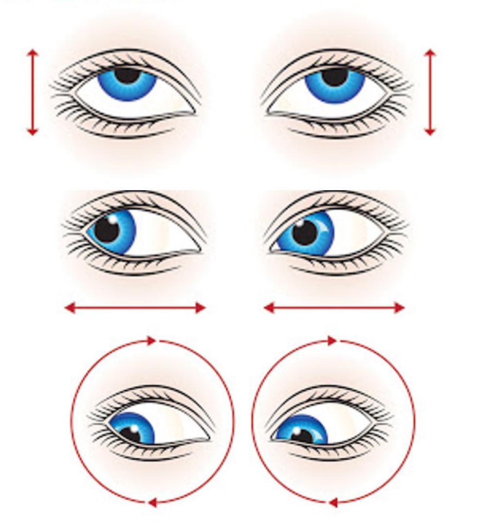 Eye muscle exercises
