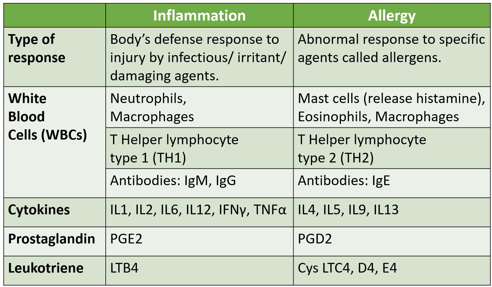 Allergy vs Inflammation