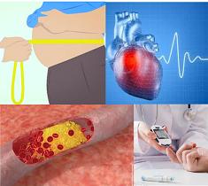 Cardiovascular, metabolic, heart