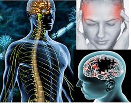 Mental and Neurological Health
